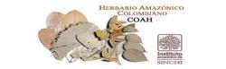 Gráfica alusiva a logo de Herbario Virtual - COAH