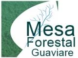 gráfica alusiva  a logo de Mesa Forestal Guaviare