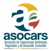gráfica alusiva  a logo de ASOCARS