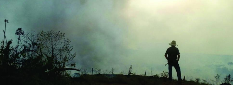 """imagen alusiva a  La CDA se desplaza hasta la vereda Cachicamo para atender denuncia sobre deforestación en  el trazado de la vía conocida como """"Marginal de la Selva"""""""