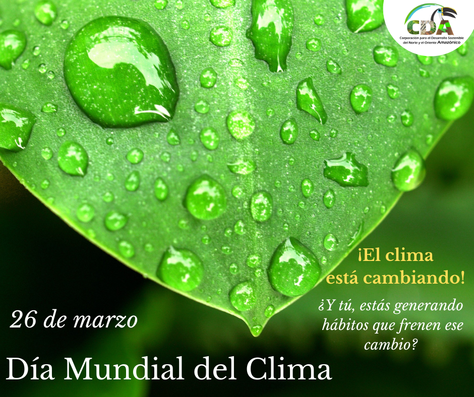 imagen alusiva a  Día mundial del Clima
