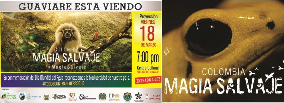 imagen alusiva a  Guaviare está viendo Colombia Magia Salvaje en conmemoración del Día Mundial del Agua